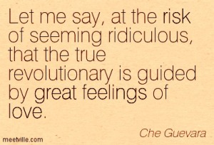 Quotation-Che-Guevara-great-love-risk-feelings-Meetville-Quotes-122031