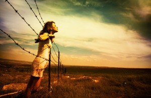 barbed-wire-freedom2