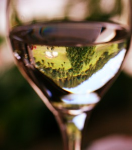 Clarity_and_brightness_of_chablis_wine